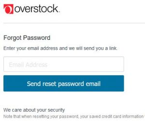 Reset Overstock Password